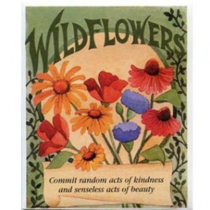 wildflower seed packets from davids garden