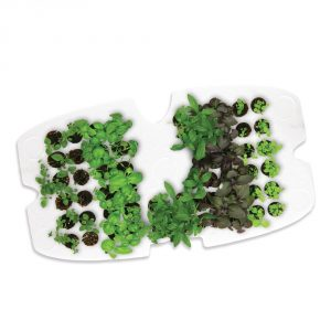 Aerogarden Ultra LED Review - seed starter tray
